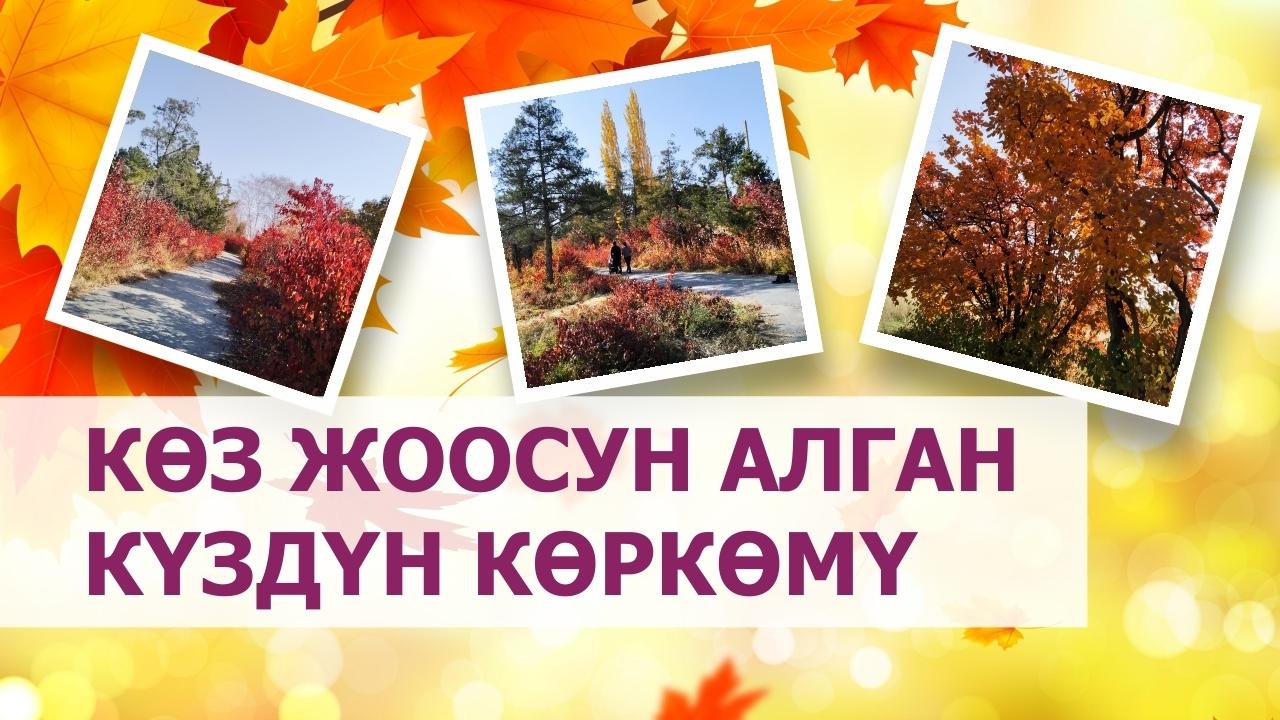 Көөдөнүң көркөмдүктү эңсегенде: Бишкектеги күз